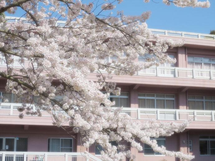 長崎精道小学校・中学校 沿革