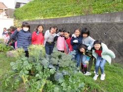 元気野菜づくり2020 収穫と調理